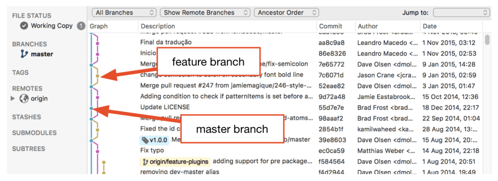 Master vs feature branches